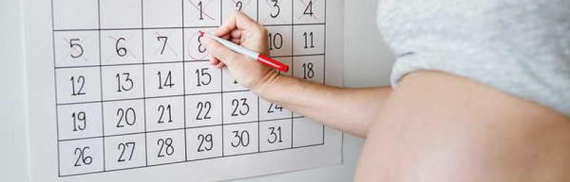 Калькулятор беременности по неделям